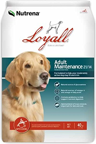 loyall-adult-maintenance-40lb