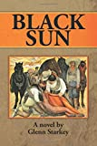 img - for Black Sun book / textbook / text book