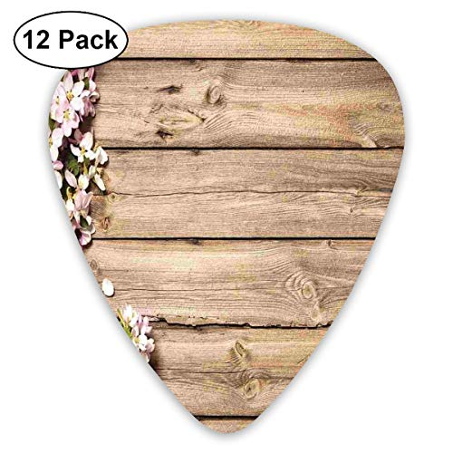 Branch Sweet (DeborahFosterLL Sweet Spring Flowering Branch Guitar Picks Complete Gift Set for Guitarist-Guitar Pick 12 Pack/Bass, Electric Guitar)