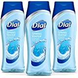 Dial Body Wash, Spring Water with All Day Freshness, 16 Fluid Ounces (Pack of 3)
