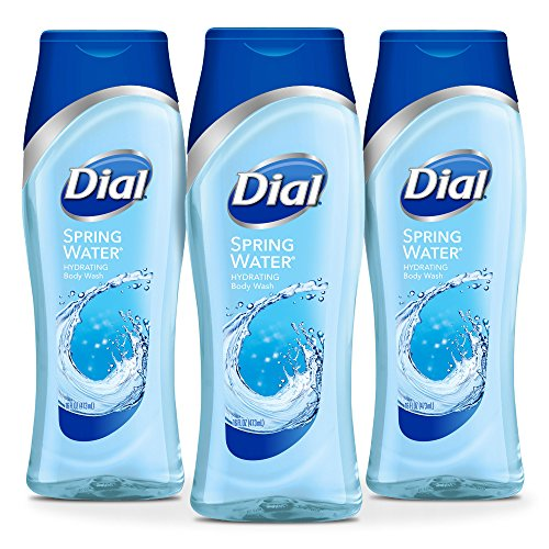 (Dial Body Wash, Spring Water with All Day Freshness, 16 Fluid Ounces (Pack of)