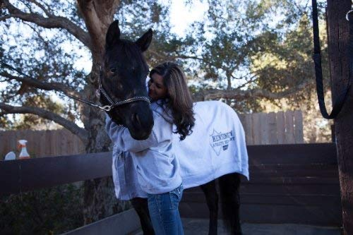 Kensington Sport Horse Cooler - Equine Cooling Blanket and Anti-Sweat Sheet, Classic Grey - XL