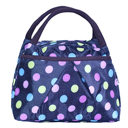 Picnic Dots - ZXKE Cartoon Print Lunch Bag Double-Layer Waterproofing Lunch Box Picnic Tote (Colorful Dots)
