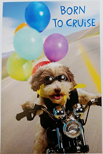 Born to Cruise - Hope Your Birthday is a Wild Ride! Greeting Card - Dog on Motorcyle