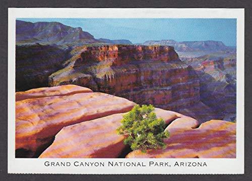 Grand Canyon National Park AZ postcard 1990s