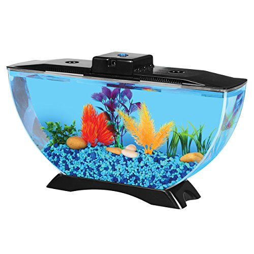 BettaTank 1-Gallon Deco Fish Tank with LED Lighting