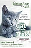 chicken soup for the soul cats - Chicken Soup for the Soul: The Cat Really Did That?: 101 Stories of Miracles, Mischief and Magical Moments