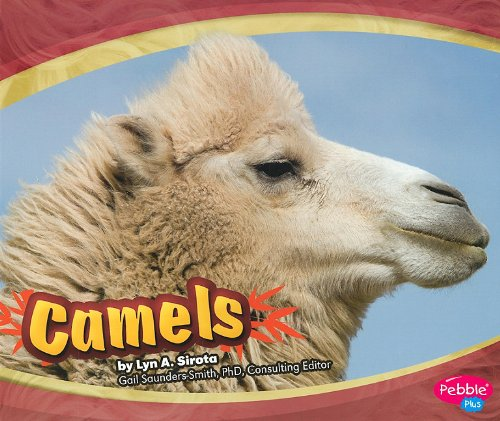 Camel press the best amazon price in savemoney camels asian animals fandeluxe Gallery