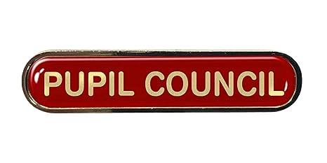 Capricornone Pupil Council Gel Domed School Bar Badge