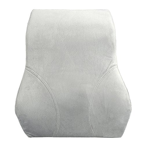 Kingta Memory Foam Back Cushion-Lumbar Lower Back Pain Lumbar Pillow-Design for Lower Back Pain and Tightness Relief,Best for Office,Home and Car(Gray)