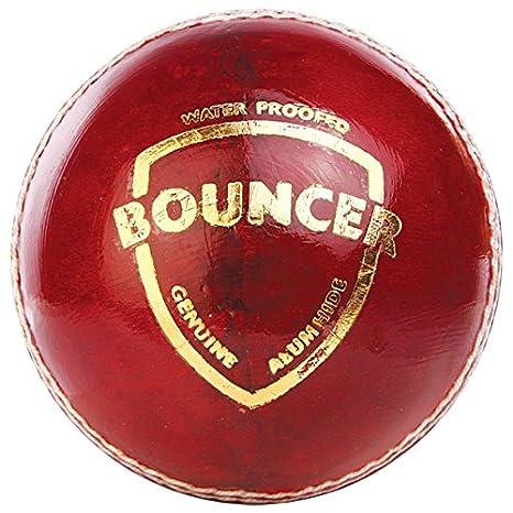 Amazon Com Ss Sunridges Yorker Cricket Ball Red Sports