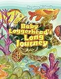 Baby Loggerhead's Long Journey