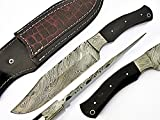 AishaTech Achmed Hunting Knife Damascus steel blade Horn handle For Sale