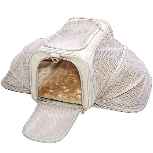 Dog Supplies Warning Save Up To 87 On Dog Supplies And