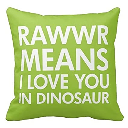 9a79503f8 Vincent Vivi Wet Rawr Means I Love You In Dinosaur Pillow Case For Kids:  Amazon.co.uk: Kitchen & Home