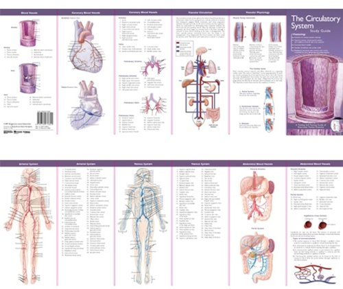 Pdf Medical Books Anatomical Chart Company's Illustrated Pocket Anatomy: The Circulatory System Study Guide