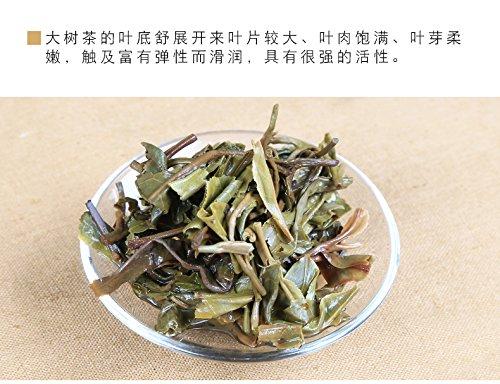 2016 Yiwu Big Old Tree Raw Pu-erh 357g Cake ChenShengHao Top Chinese Puer Tea by Wisdom China Classic Puer Teas (Image #4)