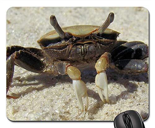 Mouse Pad - She Crab Fiddler Crab Brackish Salt Water Sand