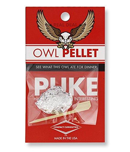 Copernicus Real Owl Pellet -