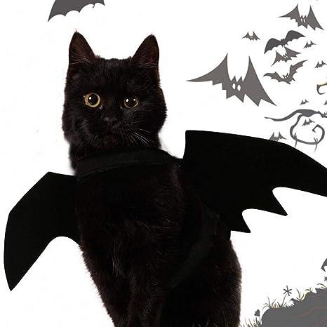 XISTORE - Alas de Bate para Gatos, Halloween, Mascota, Perro, Bate,