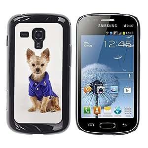 Be Good Phone Accessory // Dura Cáscara cubierta Protectora Caso Carcasa Funda de Protección para Samsung Galaxy S Duos S7562 // Australian Terrier Puppy Small Dog Fashion