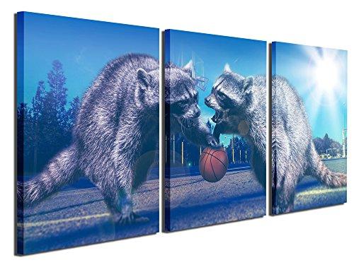 Gardenia Art Aninal Canvas Prints Wall Art Paintings Raccoon
