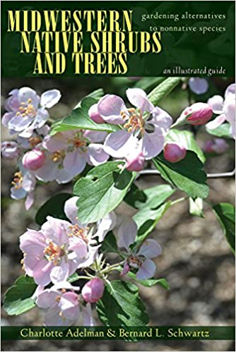 Book Midwestern Native Shrubs and Trees: Gardening Alternatives to Nonnative Species: An Illustrated Guide