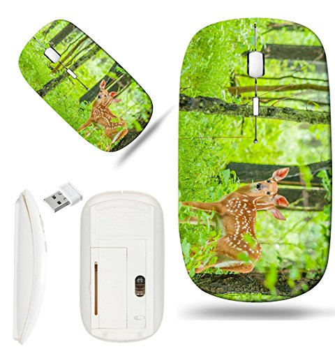 Luxlady Wireless Mouse White Base Travel 2.4G Wireless Mice with USB Receiver, 1000 DPI for notebook, pc, laptop, macdesign IMAGE ID: 29823275 Whitetail Deer Fawn standing in the woods ()