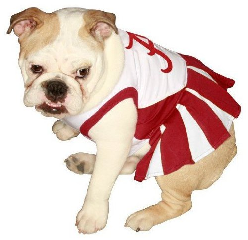 ALABAMA CRIMSON TIDE ★ CHEERLEADER DOG DRESS OUTFIT ★ ALL SIZES ★ LICENSED NCAA (XS)