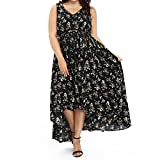 OZEA LADY Women's Plus Size Dress Sleeveless V-Neck Floral Maxi Dress for Summer-2