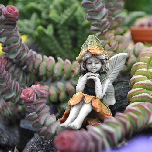 Miniature Garden Fairy Kelly Buy Online In Uae