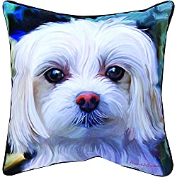 Manual Woodworkers & Weavers Paws and Whiskers Throw Pillow, Little Lord Malty Maltese, 18""