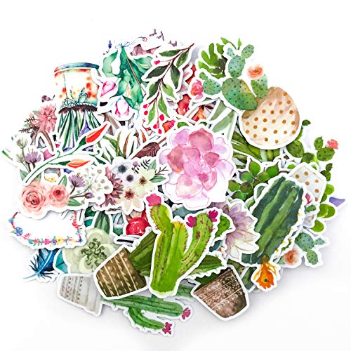 Navy Peony Watercolor Flower,Cactus and Succulent Plants Sticker Pack| Mini Waterproof Decals for Laptops, Water Bottles and Phones| Artsy Floral Stickers for Your Scrapbooking and Bullet Journaling ()