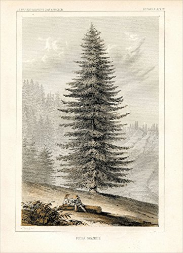 Retrospect Group Baltimore for the U. S. Pacific Rail Road Expedition & Surveys, 1857 Boxed Holiday Notecard Set (XDB 585) ()