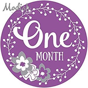 12 Monthly Baby Stickers, Purple, Gray, Flowers, Girl, Baby Belly Stickers, Baby Month Stickers, First Year Stickers Months 1-12, Purple, Grey, Baby Girl 5