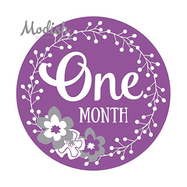 12-Monthly-Baby-Stickers-Purple-Gray-Flowers-Girl-Baby-Belly-Stickers-Baby-Month-Stickers-First-Year-Stickers-Months-1-12-Purple-Grey-Baby-Girl