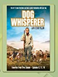 Dog Whisperer - Favorites Season One, Vol.3