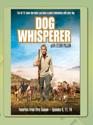 Dog Whisperer - Favorites Season One, Vol.3 - Cesar Millan Whisperer Dog