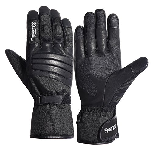 Winter Ski Gloves, FREETOO Waterproof Thinsulate Thermal Warmest Winter Snow Gloves with Gauntlet-style Goat Leather and Touchscreen for Men Skiing Snowboarding Motorcycle Work etc. (L)