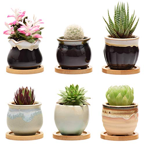 Plant Pots for Succulents, Small Ceramic Planters 2.5 Inch with Drainage & Bamboo Trays, Set of 6 Pots for Plants