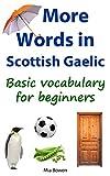 More Words in Scottish Gaelic%3A Basic v
