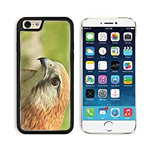 Falcon Kestrel Bird Raptor Predator Natural Closeup Apple iPhone 6 TPU Snap Cover Premium Aluminium Design Back Plate Case Customized Made to Order Support Ready Liil iPhone_6 Professional Case Touch Accessories Graphic Covers Designed Model Sleeve HD Tem