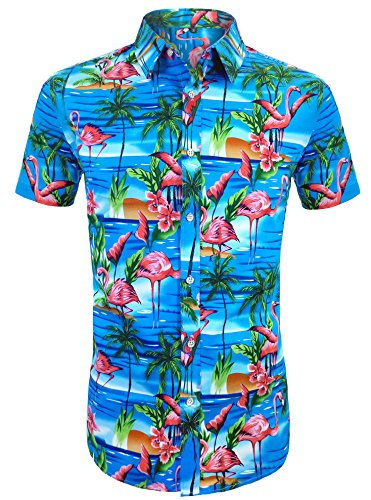 Daupanzees Men's Flamingos Hawaiian Shirts Floral Hawaiian-Print Tropical Leisure Unisex Short Sleeve Vacation Button Down Aloha Shirt (Sky Blue XL)