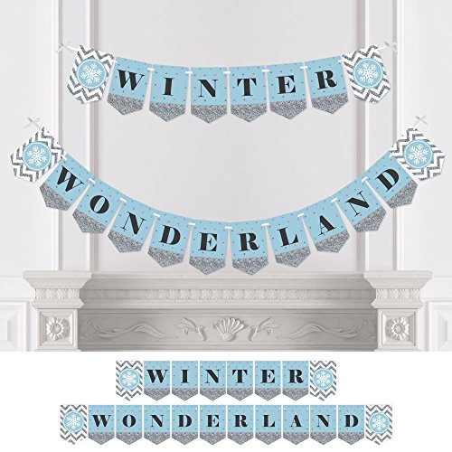 Winter Wonderland - Snowflake Holiday Party & Winter Wedding Bunting Banner - Snowflake Party Decorations - Winter Wonderland