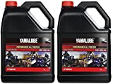 Automotive : Yamalube All Purpose 4 Four Stroke Oil 10w-40 1 Gallon (2 Gallons)