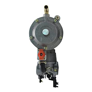LPG Propane Gas Conversion Kit Replacement for Petrol