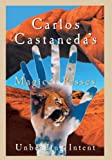 Carlos Castaneda's Magical Passes
