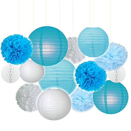 Fascola 14ps Blue&White Party Decor Background Wall Wedding Theme Tissue Paper Pom Pom Tassel Garland Polka Dot Tissue Poms Paper Garland for Wedding Baby Shower Decoration Bridal Shower Blue Birthday