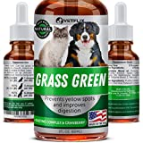 Best Dog Urine Neutralizers - Grass Saver for Dogs - USA Made Review