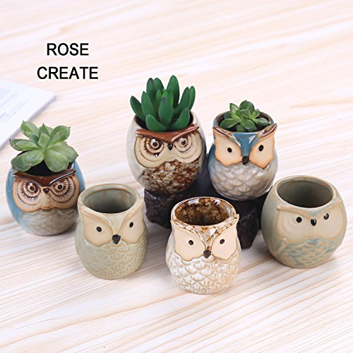 ROSE CREATE 6 Pcs 2.5 Inches Owl Pots, Little Ceramic Succulent Bonsai Pots with a Hole - Pack of (Ceramic Garden Urns)